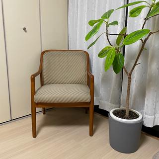 karimoku カリモク 椅子 チェア スツール