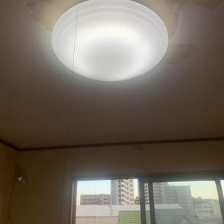 シーリング ライト NEC 照明器具 8LV234SG 2…