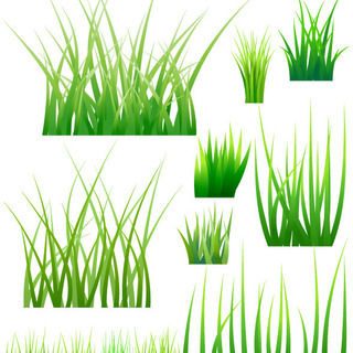 2022年度 除草 予約受付中 300平米以上は除草剤がお得です。