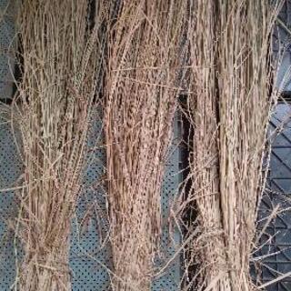 ②長い稲藁❗️家庭用の超ブランド米の藁です❗️