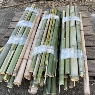 竹 無料で譲ります