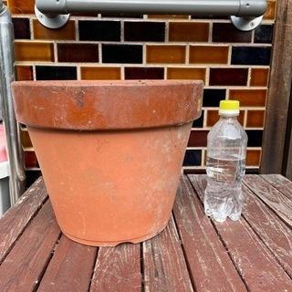 陶器の植木鉢あげます❗️近々、割って処分するので。②
