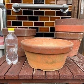 陶器の植木鉢あげます❗️近々、割って処分なので。④