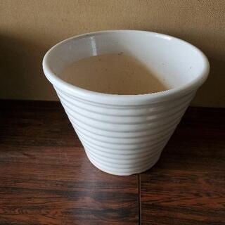 白陶器の鉢
