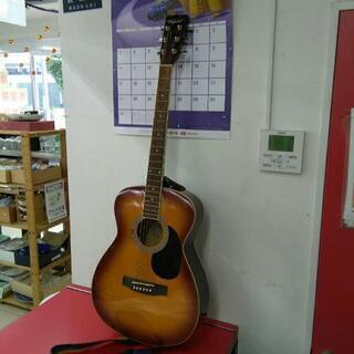 Vanguard ヴァンガード アコースティックギター V…