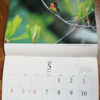 野鳥カレンダー 2008