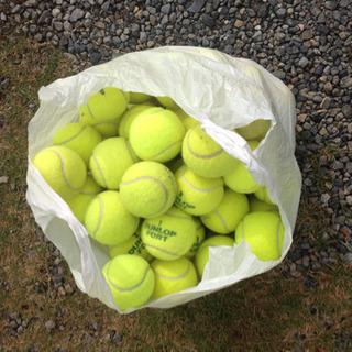 テニスボール 85個