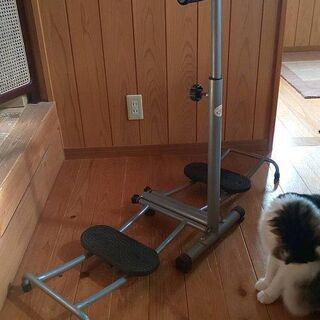 レッグマシンアクティブスライド 下半身ダイエット 運動器具