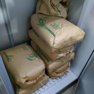 令和2年度米 玄米30kg にこまる 低農薬低温保存