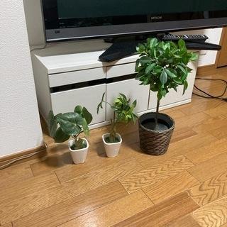 観葉植物 フェイクセット