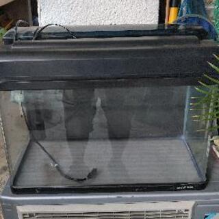 ニッソー60cm規格水槽