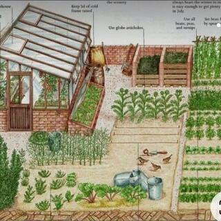 木製のビニールハウス小屋を作りたい