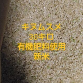 キヌムスメ新米30キロ