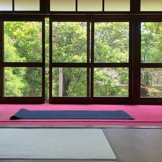 【お寺でハタヨガ】季節の移ろいを感じながら、ほっと一息