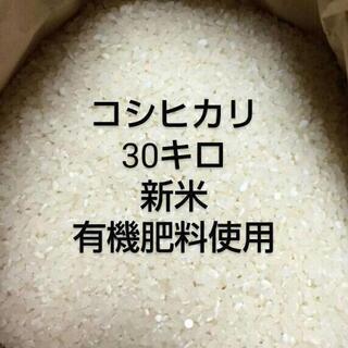 コシヒカリ30キロ新米