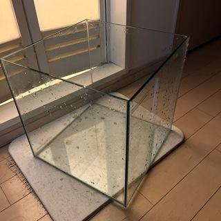 キューブ ガラス水槽(30cm角)