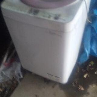 SHAPE全自動洗濯機