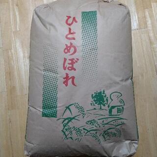 令和2年産 ひとめぼれ玄米30kg