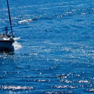 ヨットの回航いたします。