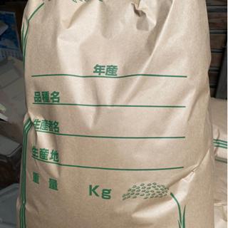 まだあります❗️令和3年✨彩のきずな 新米🍚 玄米10キロ…