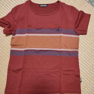 未使用 KANGOL レディース半袖Tシャツ Mサイズ 2枚