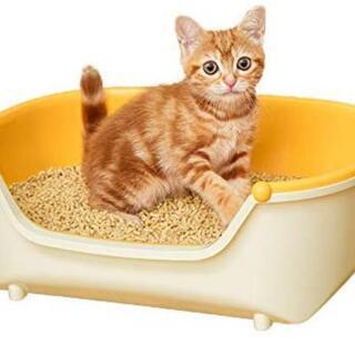 仔猫用 システムトイレ