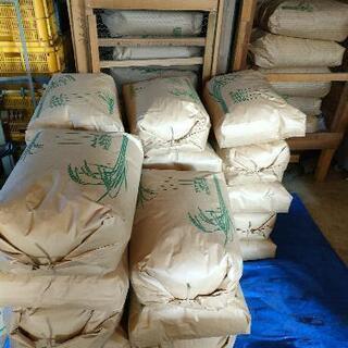 令和3年新④(玄米)30kg  にこまる 残り27袋となりました