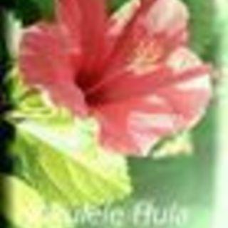 ハワイアンフラ&タヒチ~ Hoku...