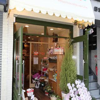 愛犬愛猫と楽しい毎日を♪緑のある犬猫美容室ココットベール