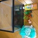 金魚の水槽など  セットで!