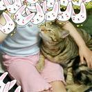 猫のおとこの子です。