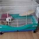 ウサギ飼育セット