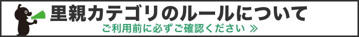 Banner pc 716x74