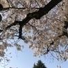 うーなりさんのプロフィール画像