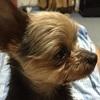naminamiさんのプロフィール画像