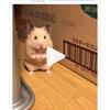 錦さんのプロフィール画像
