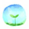 みどりの葉っぱさんのプロフィール画像