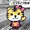 エコライフ熊本さんのプロフィール画像