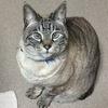 tamuさんのプロフィール画像