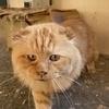 ヒロキさんのプロフィール画像