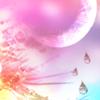 モモ太郎さんのプロフィール画像