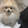RINAさんのプロフィール画像