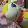 野花さんのプロフィール画像