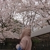 kaoriさんのプロフィール画像